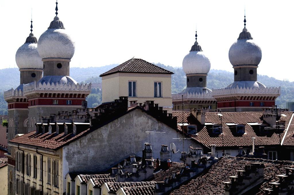 sinagoga_roof